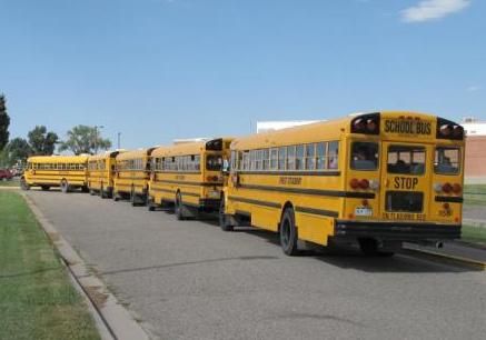 Buses in line