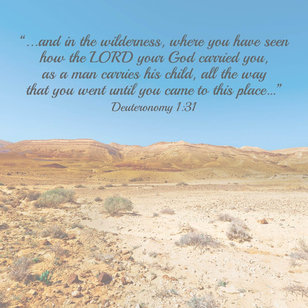 Desert Meredith May 2015 copy