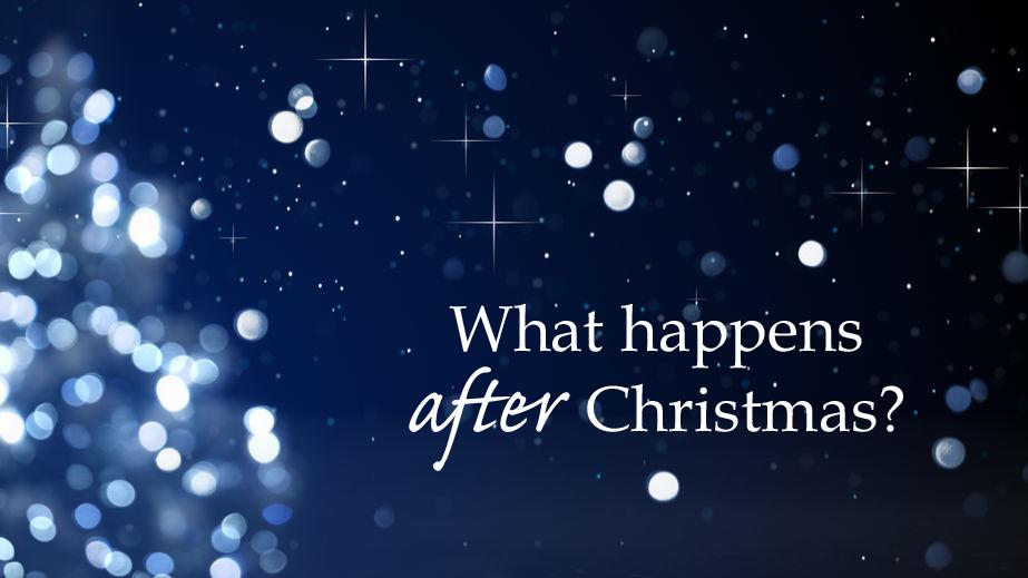 Christmas Tree Roger 12.29