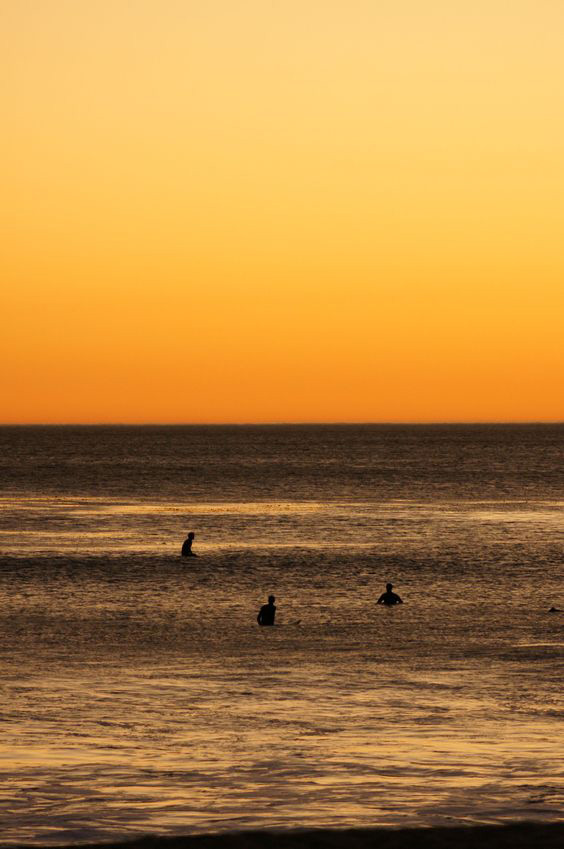 Surfers Roger small